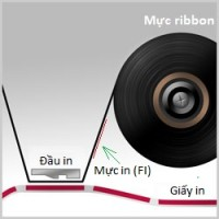 Mực ribbon: mực in mặt ngoài (FO) hay mực in mặt trong (FI)?