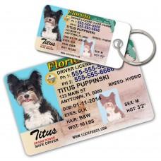 Phôi thẻ nhựa ID chất liệu PET
